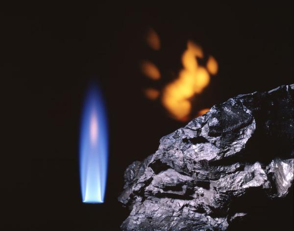 +20 Torba Kömür